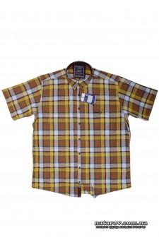 Рубашка Barcotti